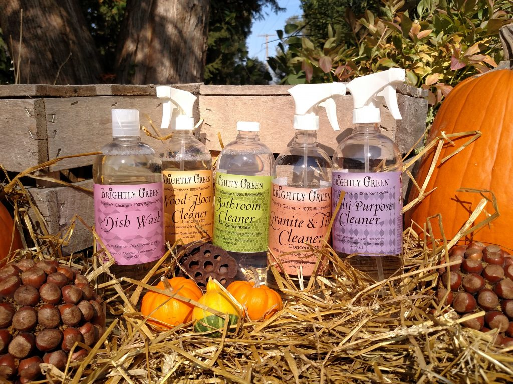 eco friendly vegan cleaning products in fall setting